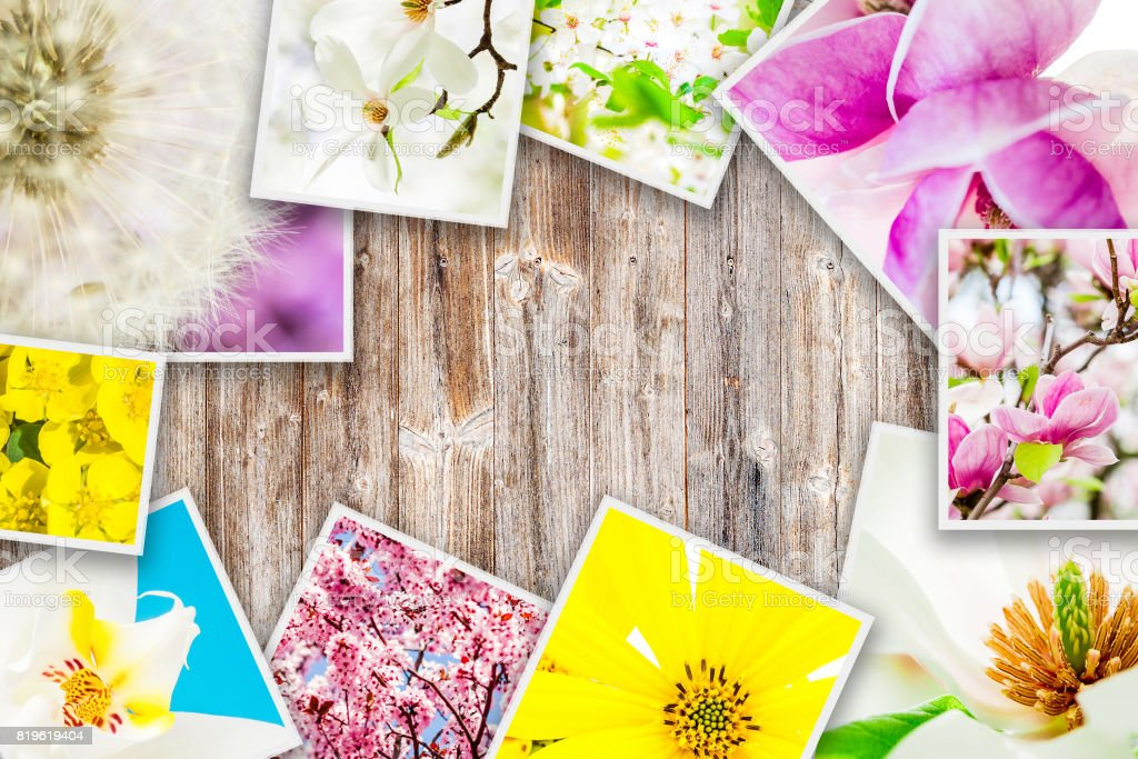 flowers forming collage on wooden background stock photo