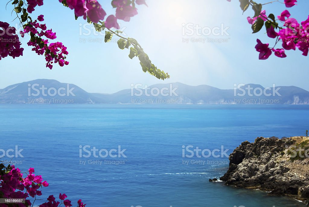 Flowers framing blue sea stock photo