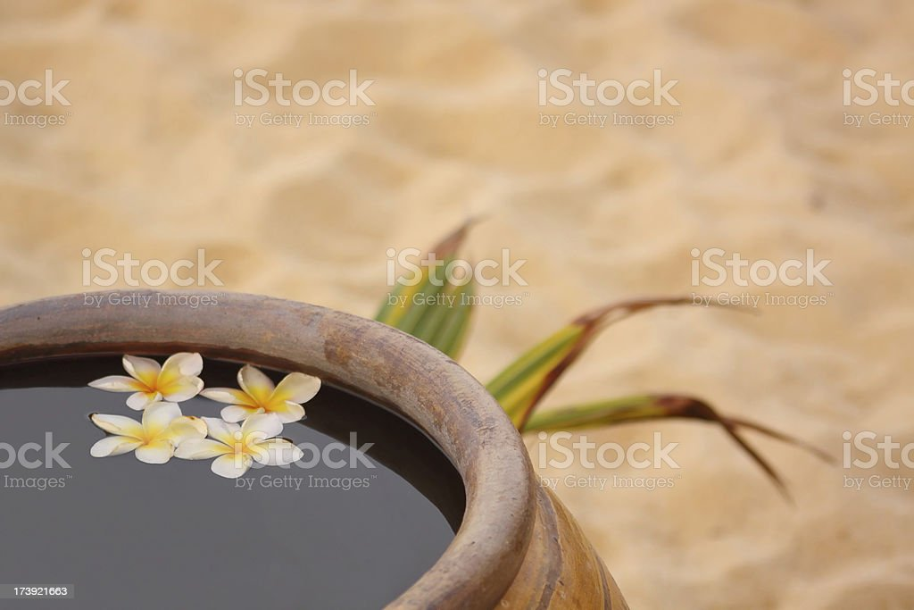 flowers in a jar on the beach stock photo