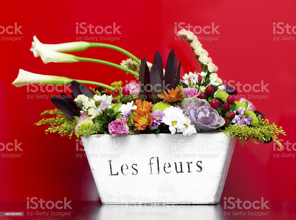 flowers in a pot royalty-free stock photo