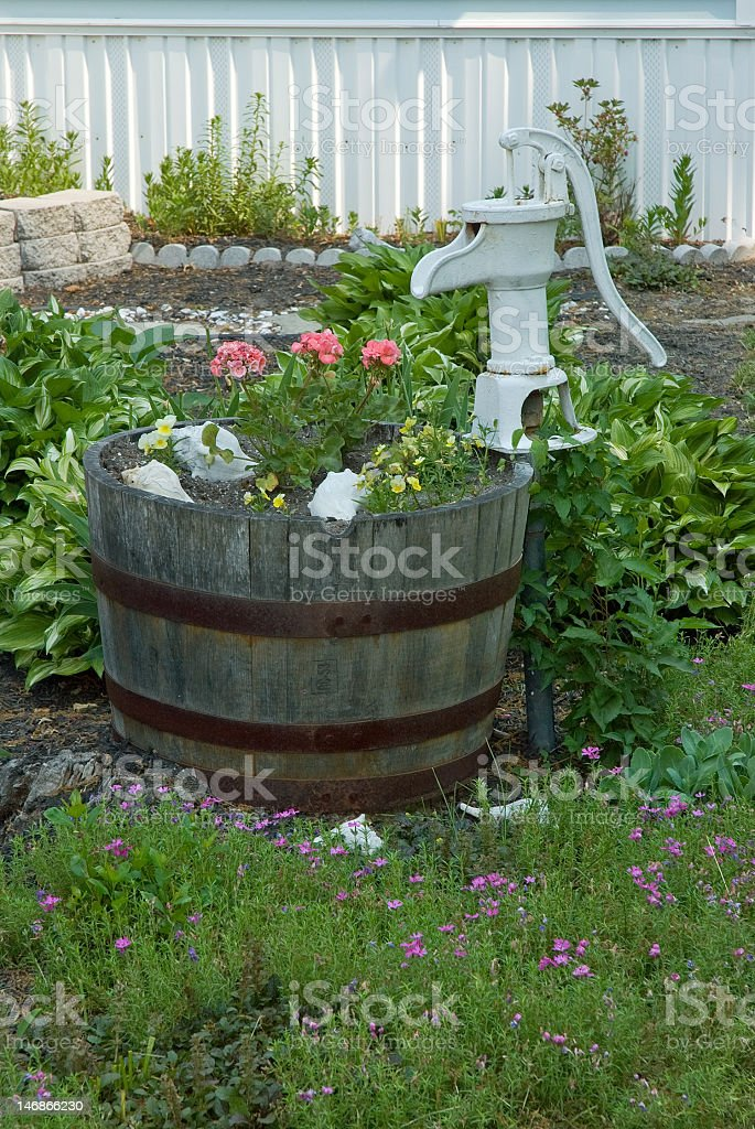 Flowers in a Whiskey Barrel royalty-free stock photo