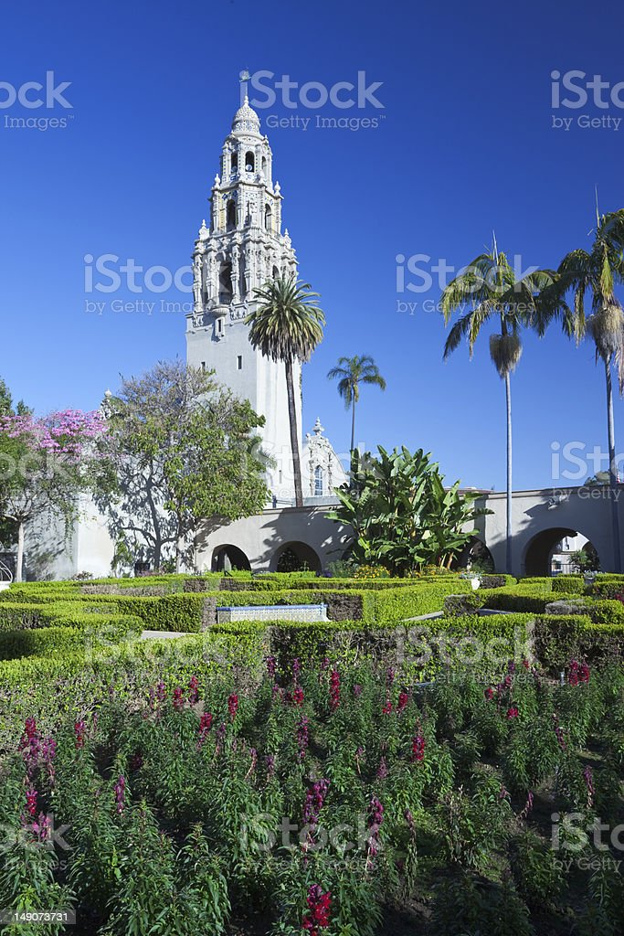 Flowers in Balboa Park, San Diego stock photo