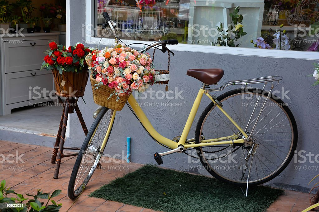 Flowers in Bicycle stock photo