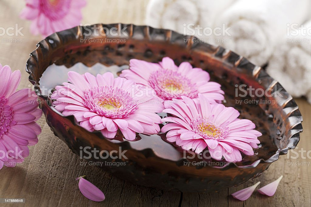 flowers in bowl for aromatherapy royalty-free stock photo