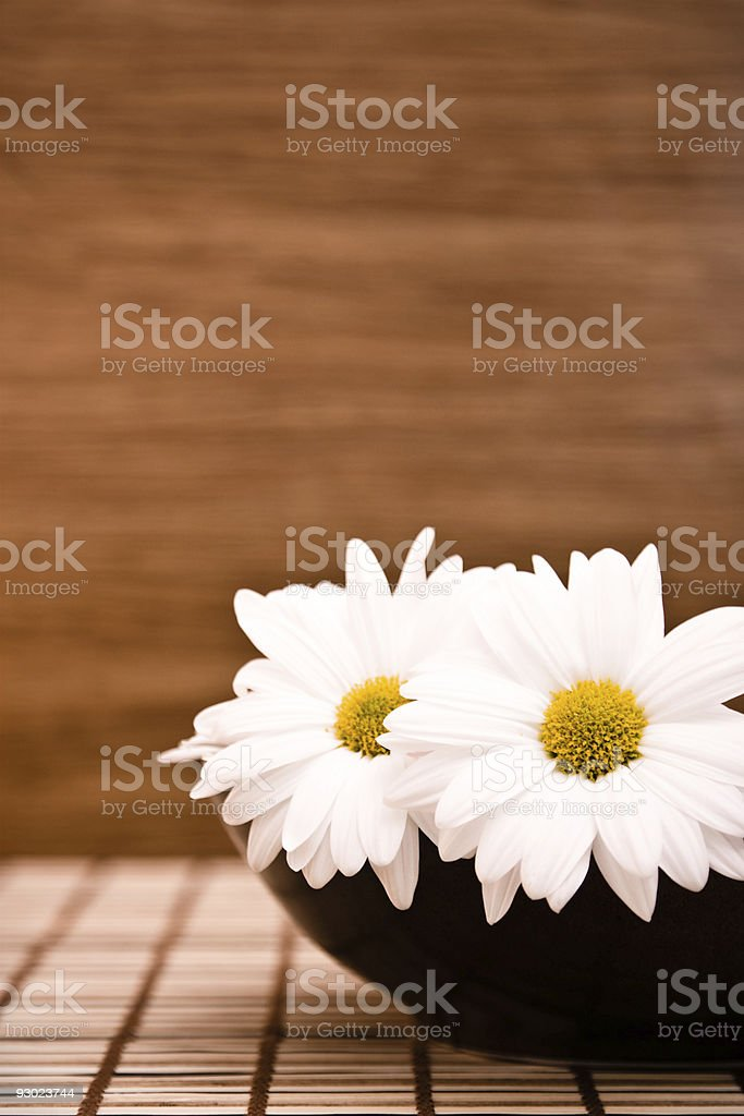 flowers in bowl stock photo