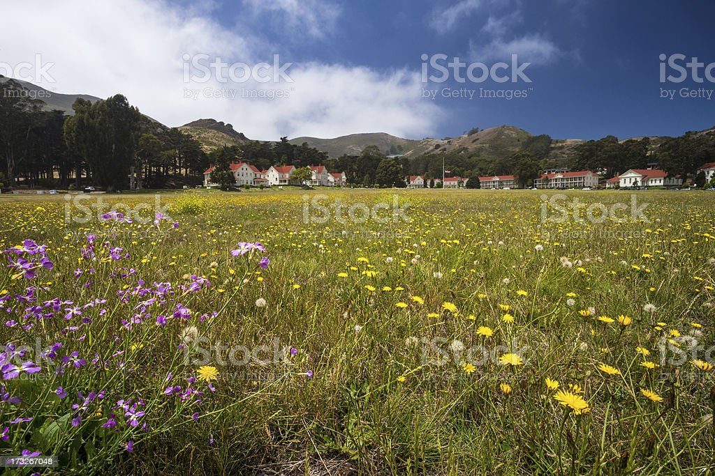 flowers in front of fort baker royalty-free stock photo