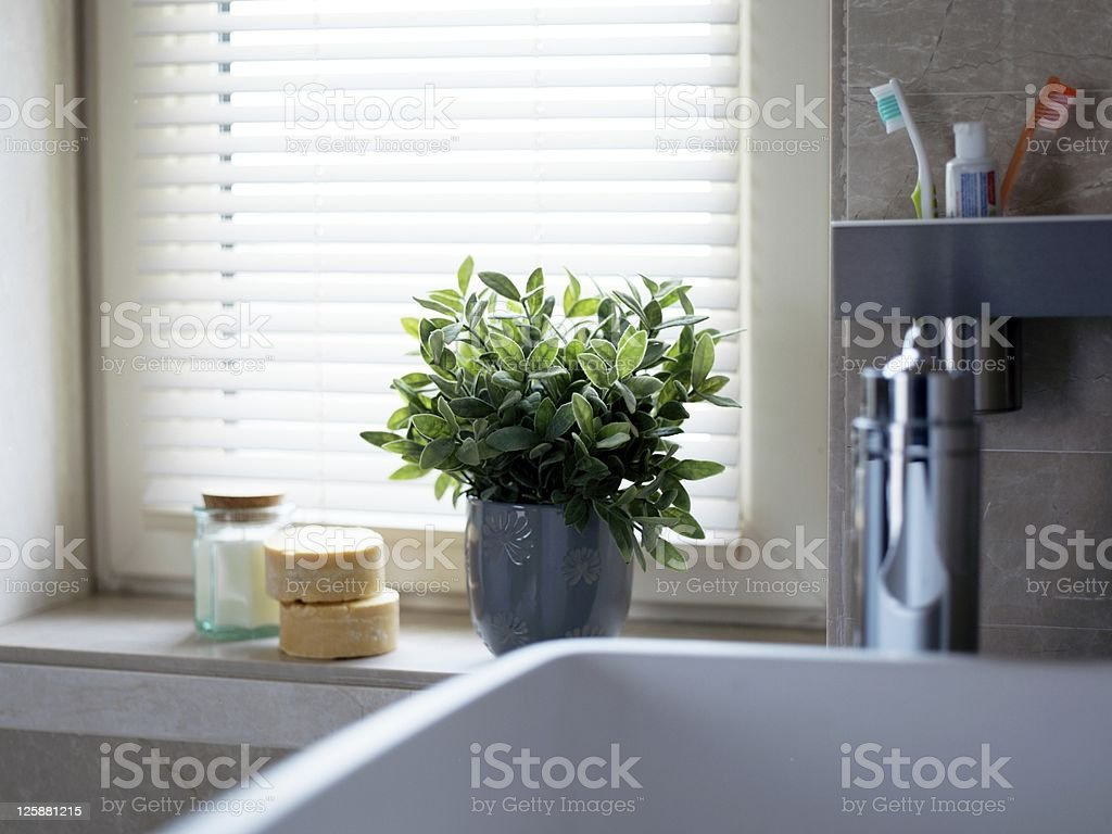 Flowers in front of the bathroom window royalty-free stock photo