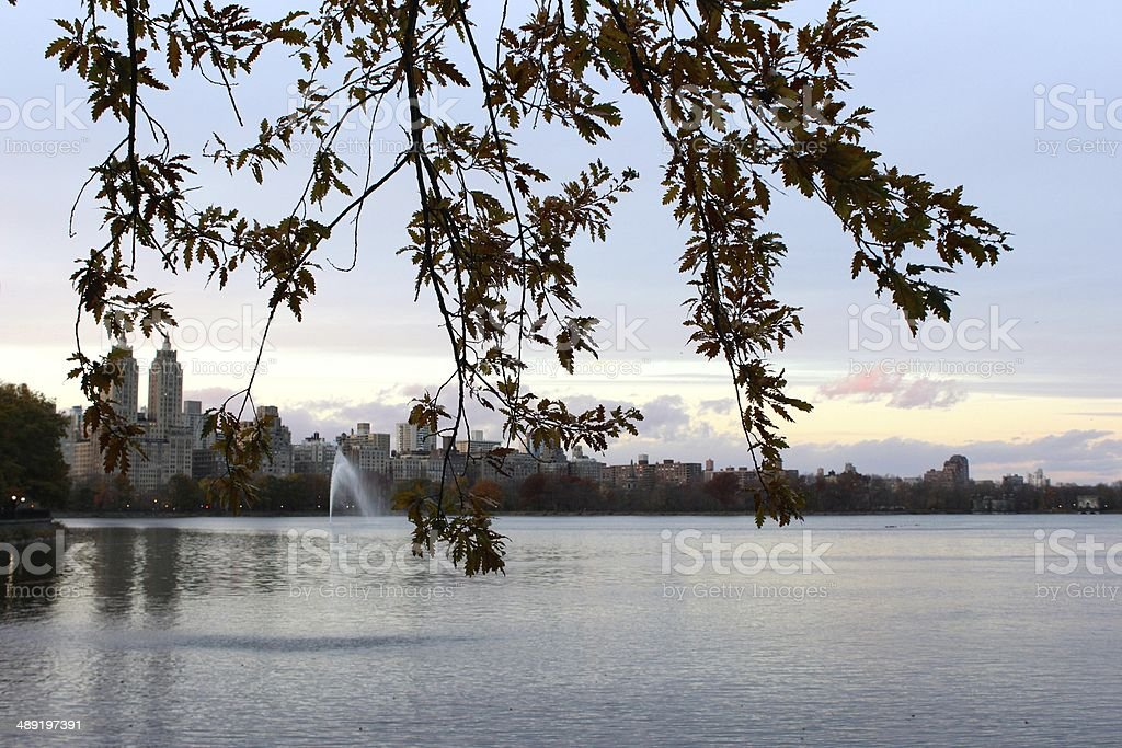 Flowers in front of the Jacqueline Kennedy Onassis Reservoir royalty-free stock photo
