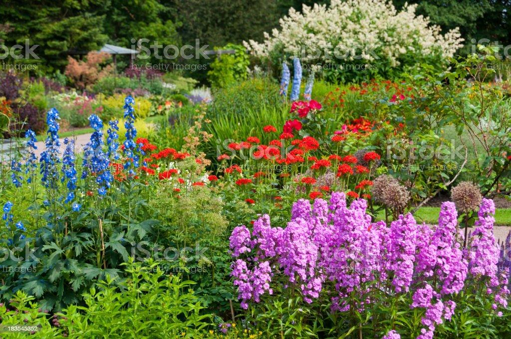 Flowers in Ornamental garden royalty-free stock photo