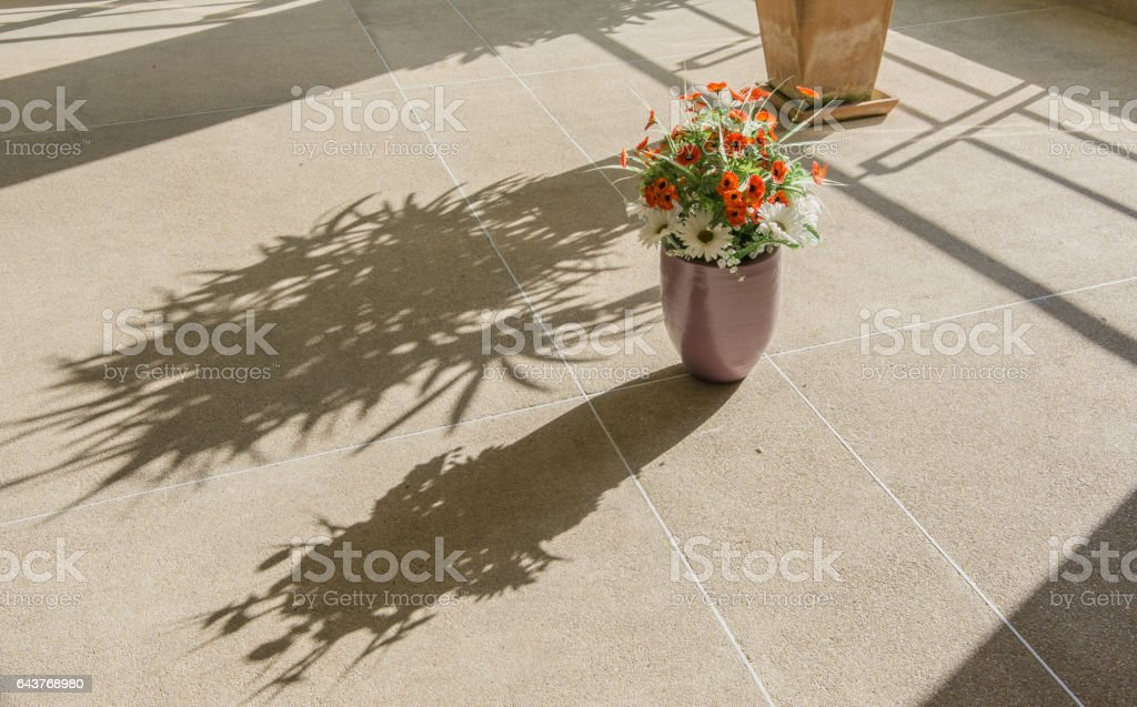 flowers in pots and shadows on brown floor rough stock photo