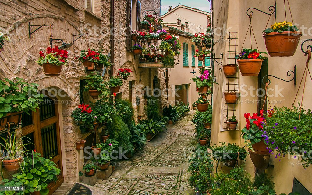 Flowers in Spello alley stock photo