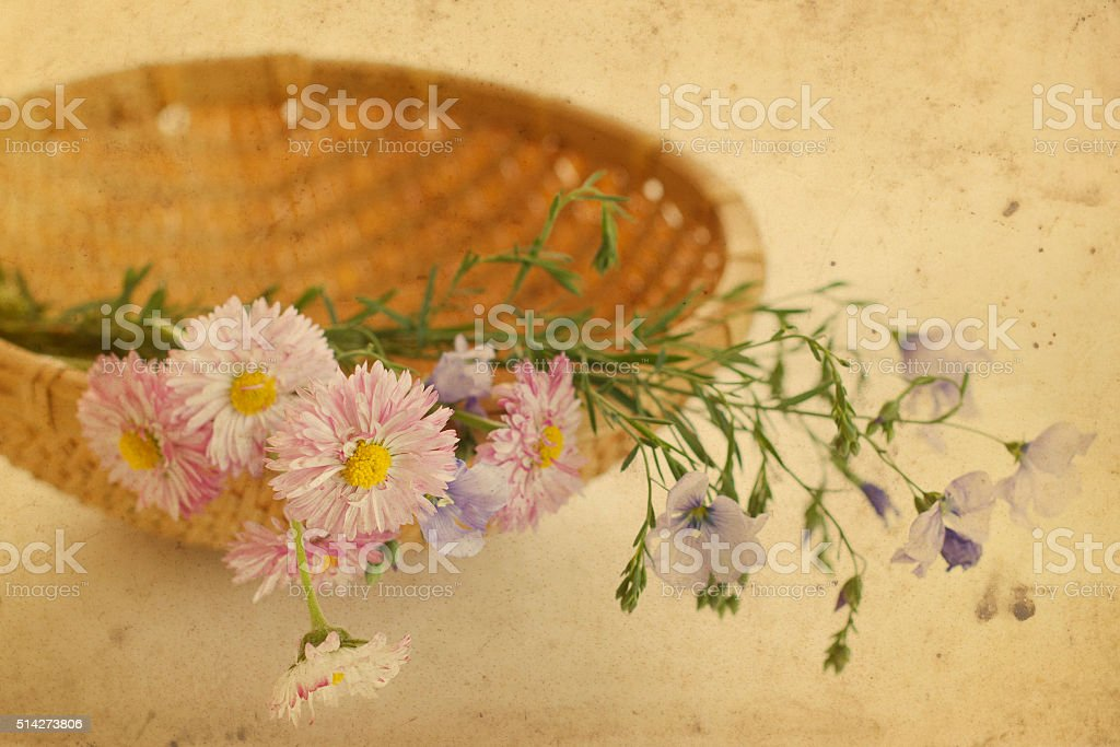 Flowers in the basket stock photo