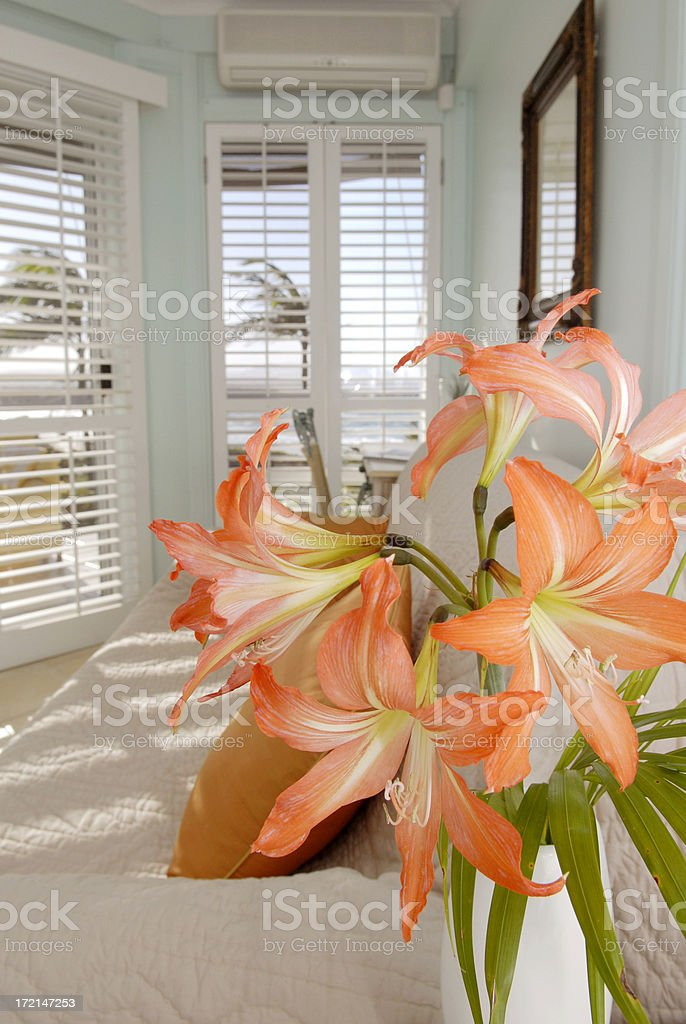 Flowers in the room royalty-free stock photo