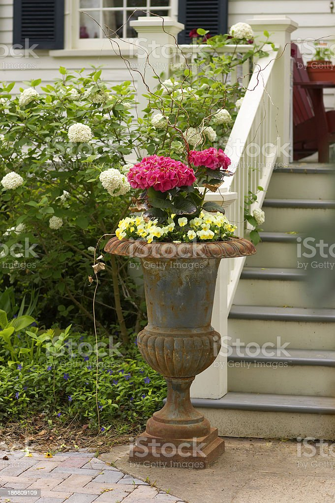 Flowers in urn royalty-free stock photo