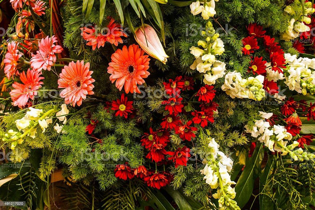 Fleurs à Valence photo libre de droits