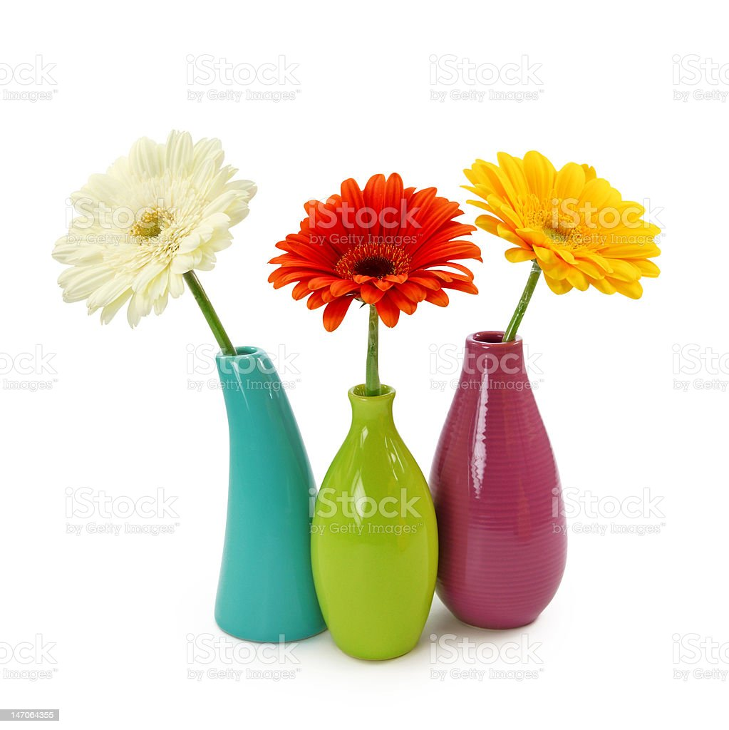 Flowers in vases stock photo