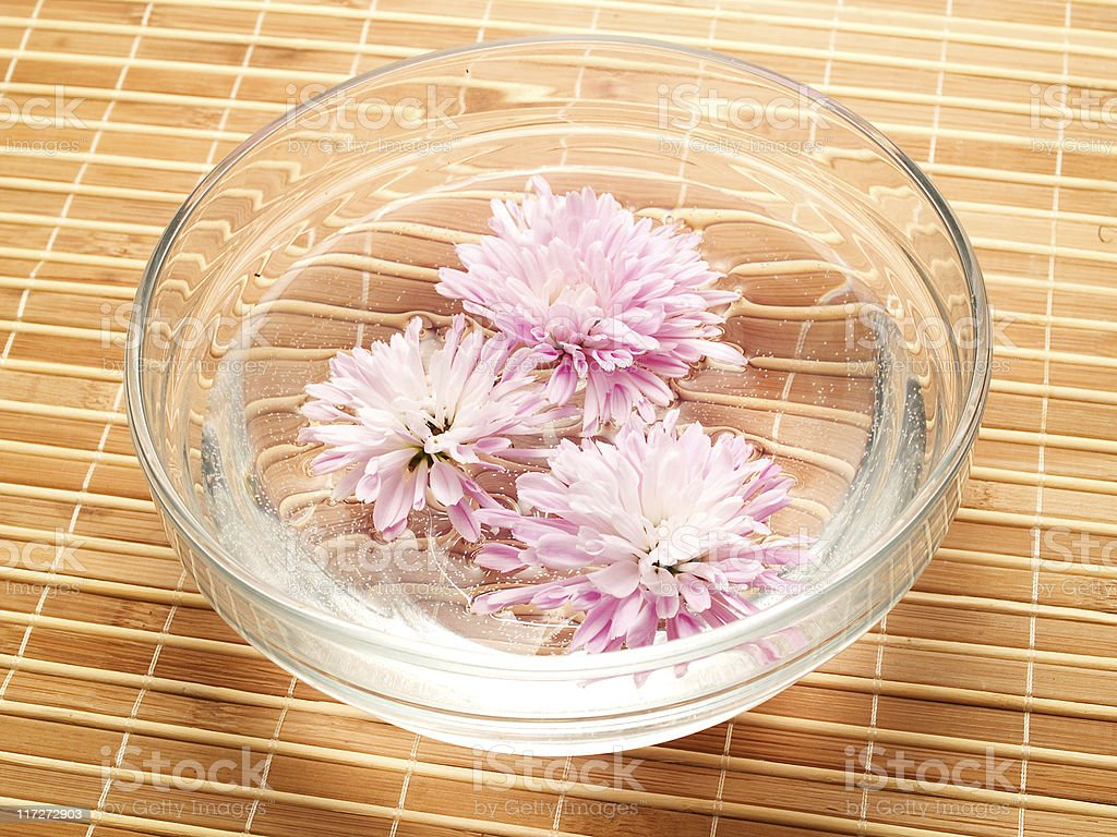 Flowers in water royalty-free stock photo