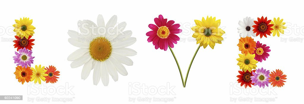 Flowers love royalty-free stock photo