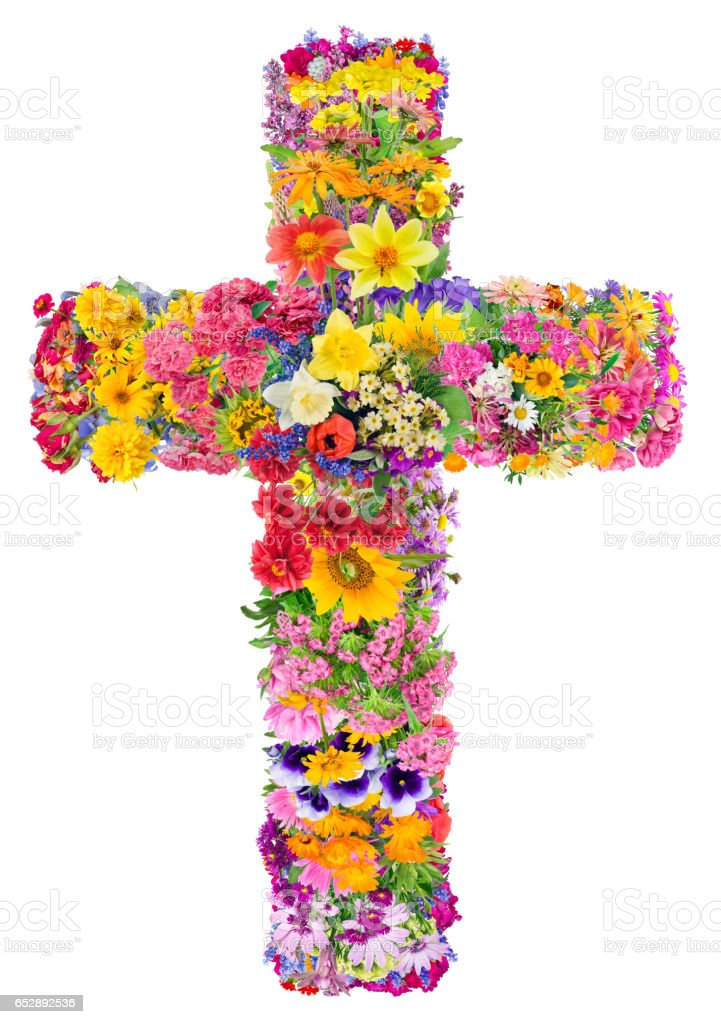 Flowers of a cross of Jesus in my heart concept. Collage from summer plants. Isolated. You can find all the full sized images in my portfolio. stock photo