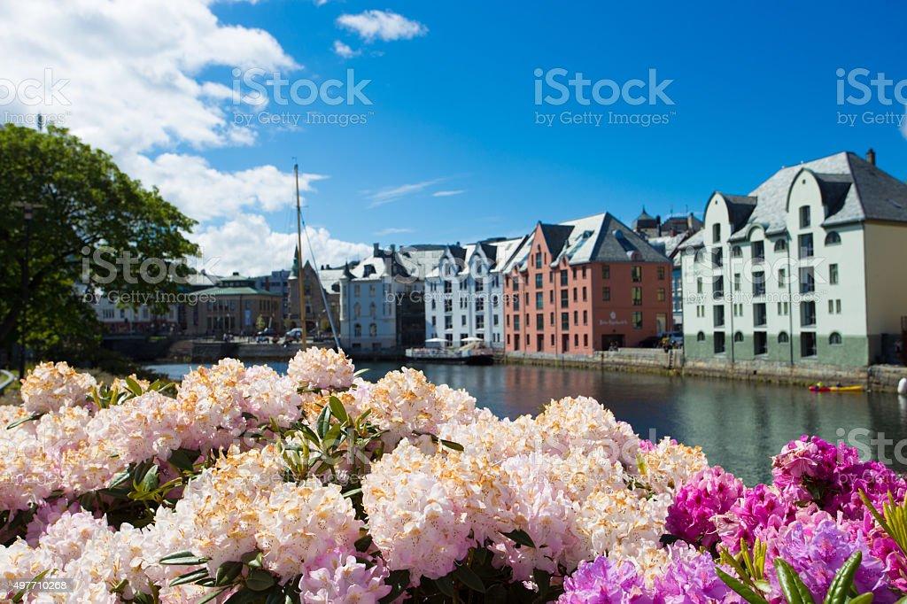 flowers of Alesund stock photo
