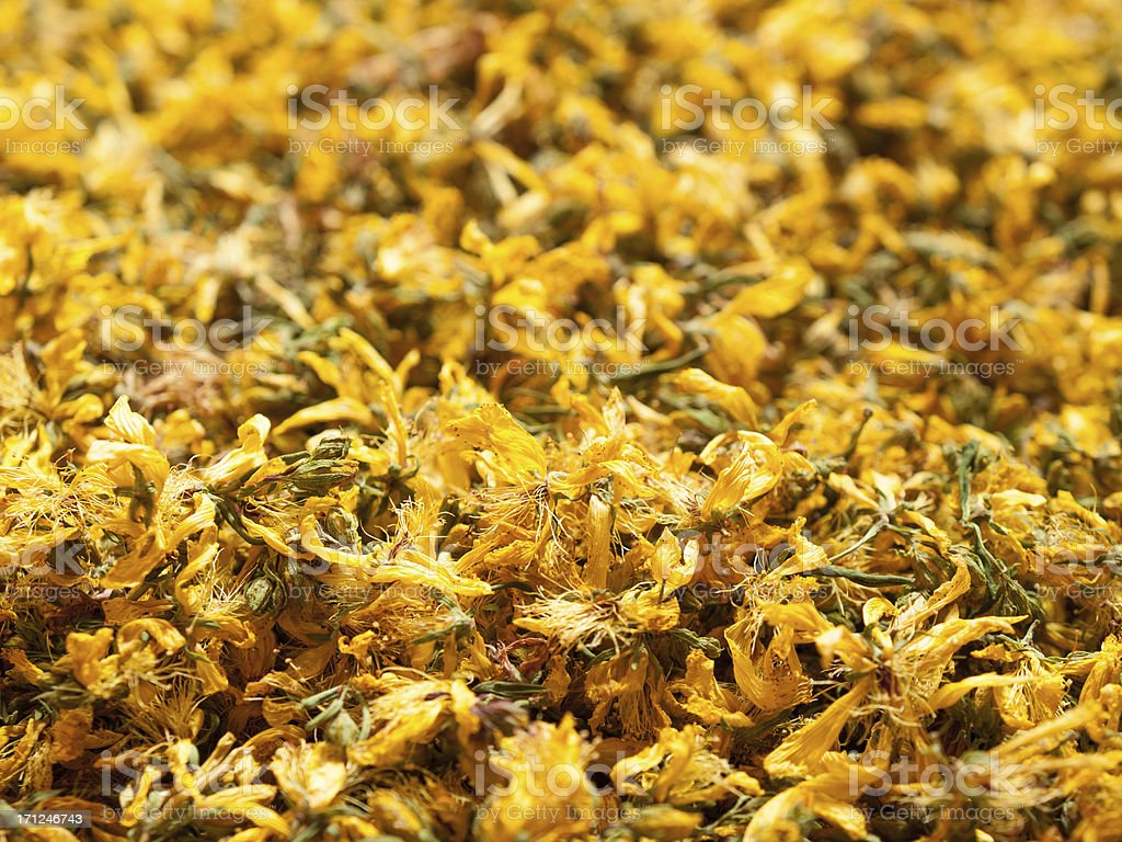 Flowers of St. Johns wort (Hypericum perforatum), dried for tea stock photo