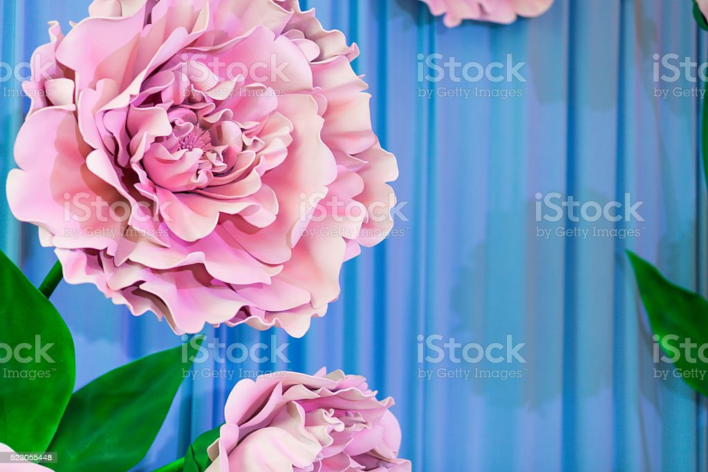 Flowers on a blue background stock photo
