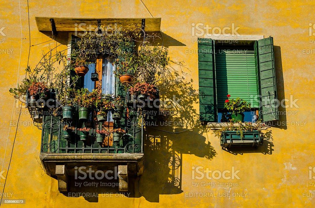 Fiori su un balcone di casa a Venezia foto stock royalty-free