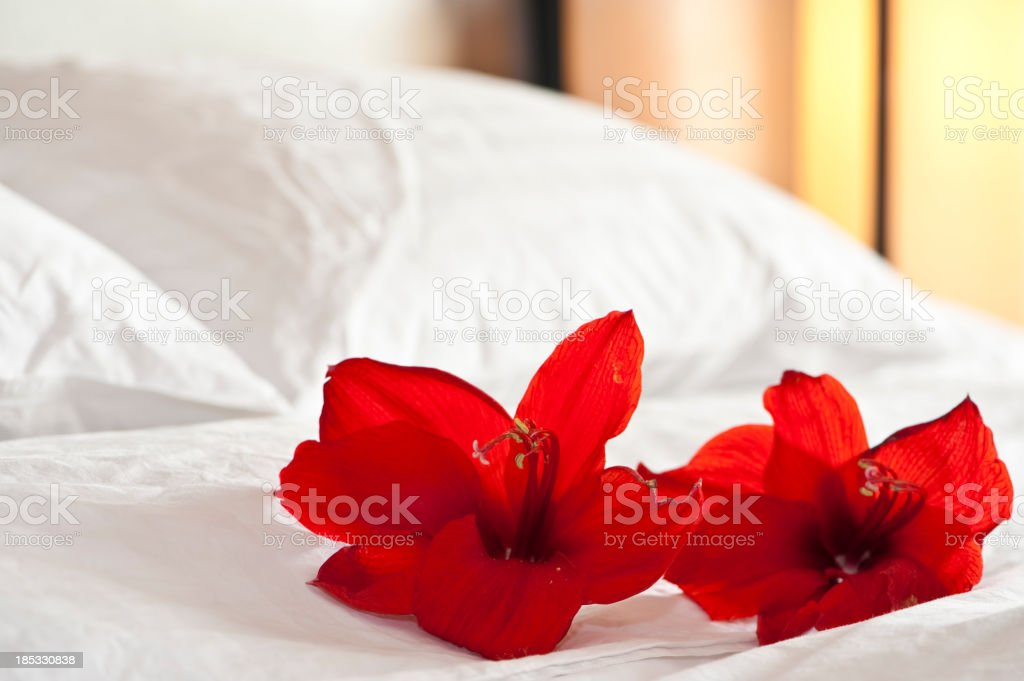 Flowers on a sheet in a hotel room  stock photo
