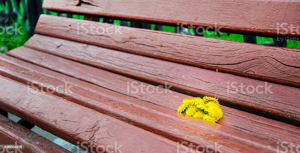 flowers on bench stock photo