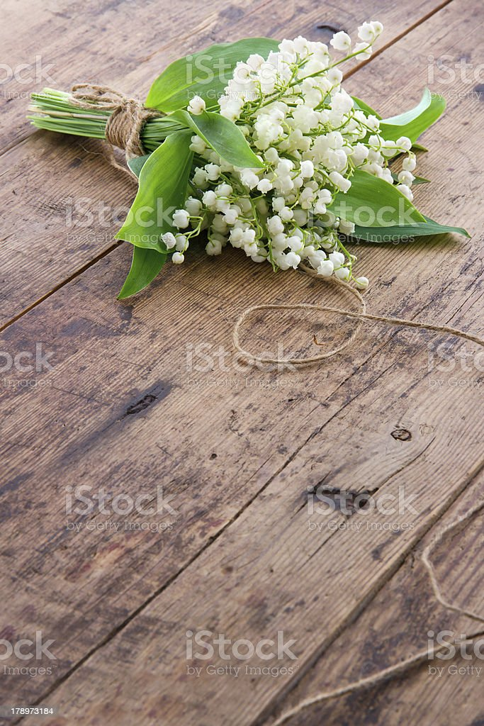 Flowers on brown wooden backgrond royalty-free stock photo