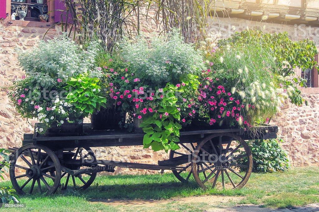 Flores em Carroça foto de stock royalty-free