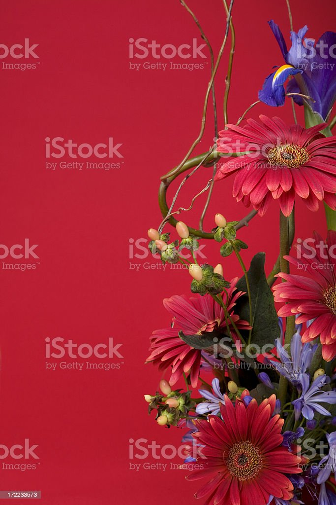 Flowers On Red royalty-free stock photo