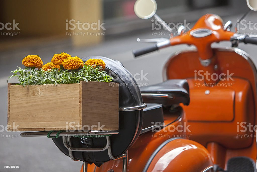 Flowers on the Back of a Scooter royalty-free stock photo
