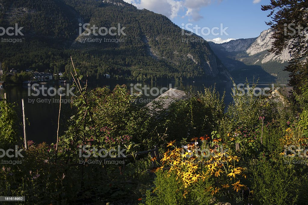 Flowers on the Lake Altaussee royalty-free stock photo