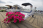 Flowers on the quay ve yachts. Transport