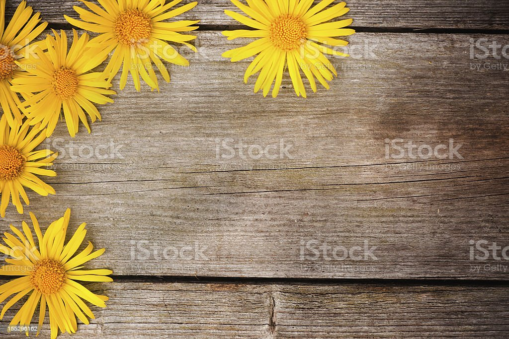 flowers on wooden background royalty-free stock photo