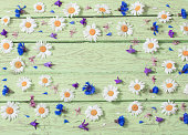 flowers over green wooden background
