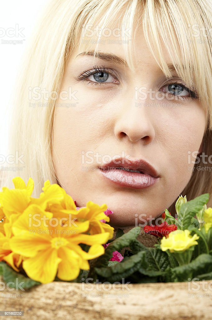 Flowers portrait stock photo