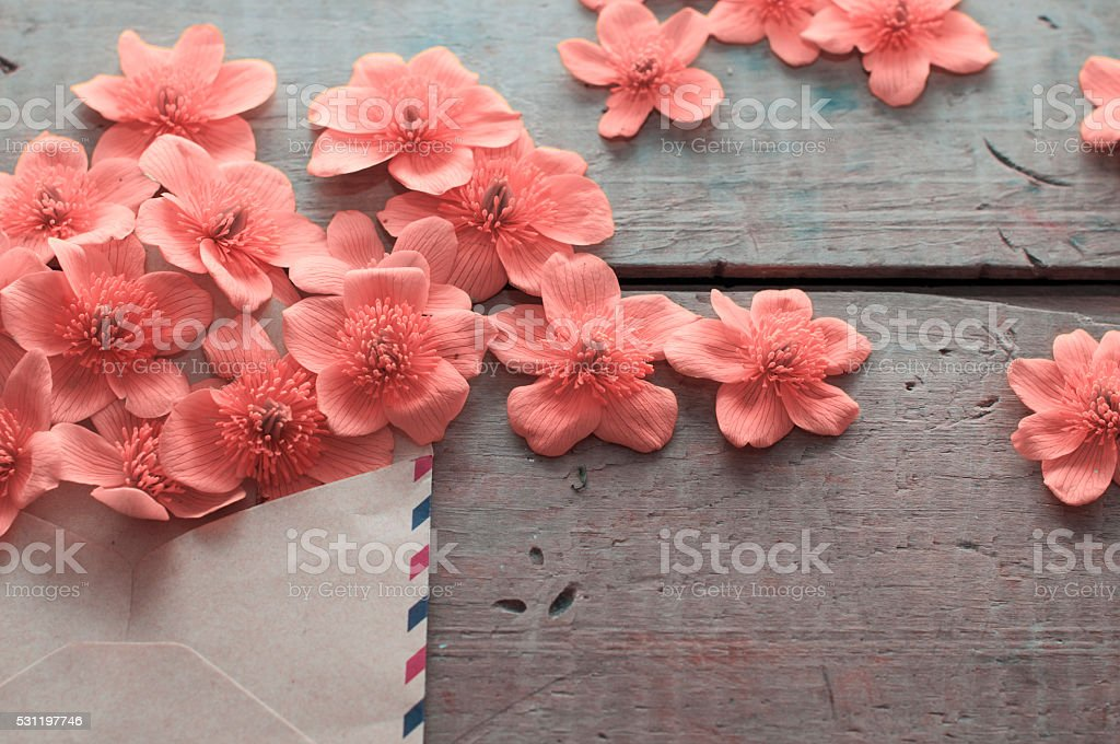 flowers splash stock photo