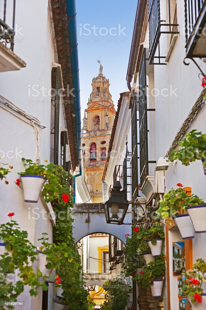 Flowers street at Cordoba Spain stock photo