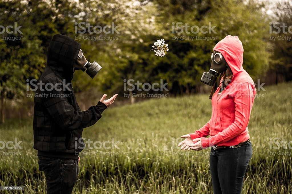 flowers such as grenade stock photo