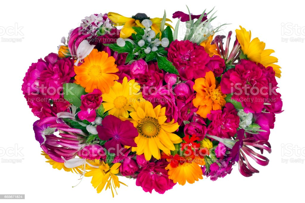 Flowers summer elliptical bed isolated concept stock photo