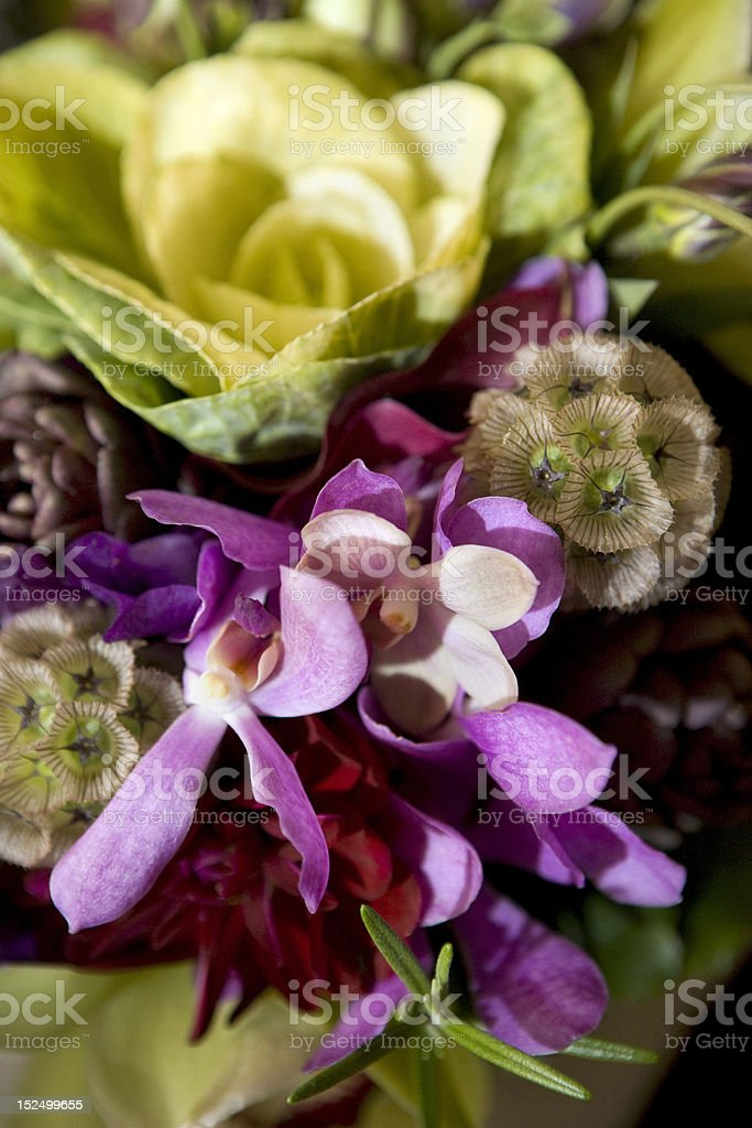 flowers variation bouquet royalty-free stock photo