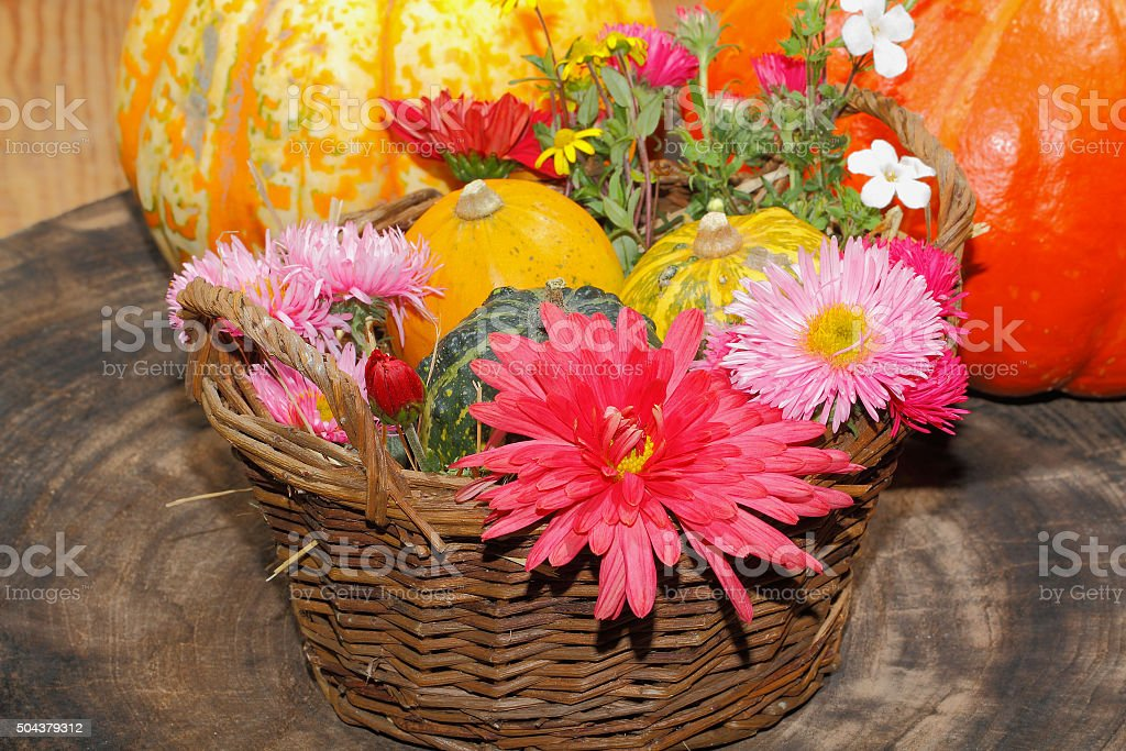 Flowers various garden flowers and ornamental gourds in a basket stock photo