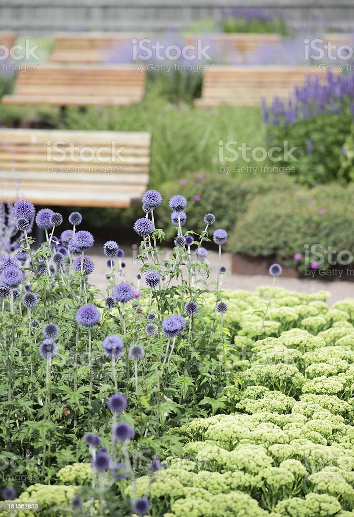 Flowers with seats stock photo