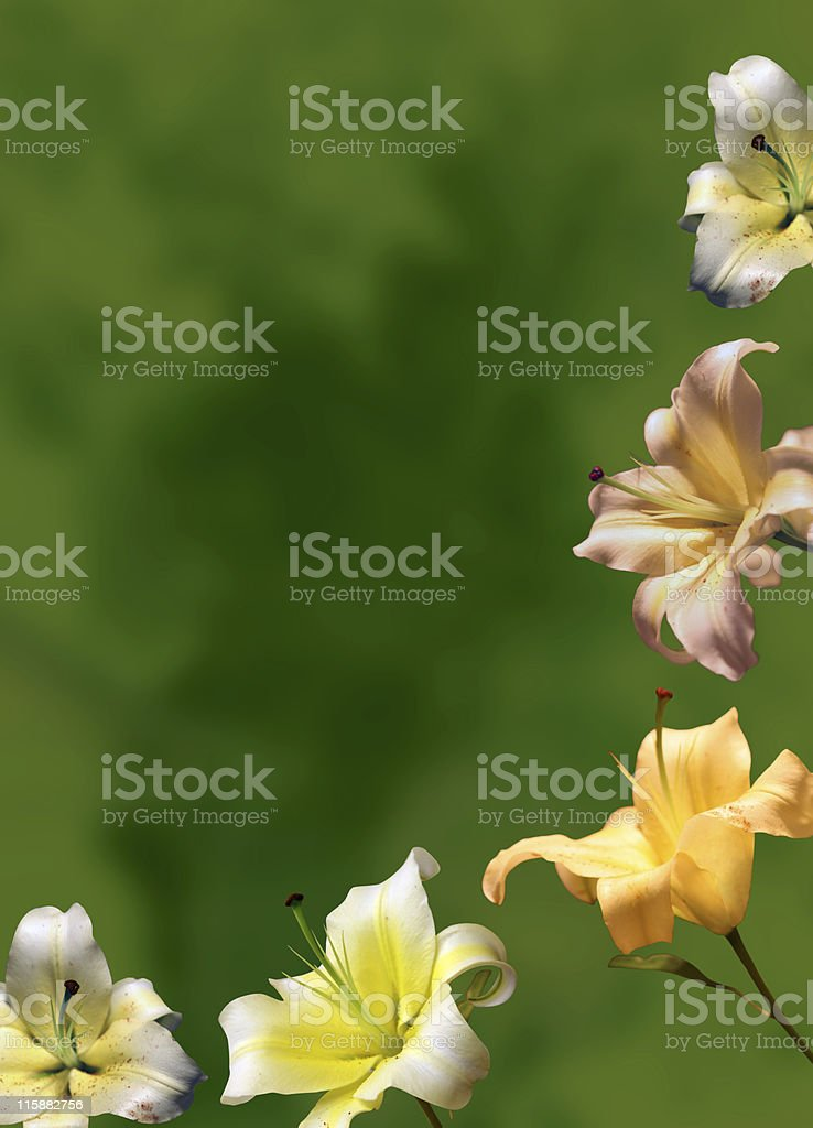 Flowery background royalty-free stock photo