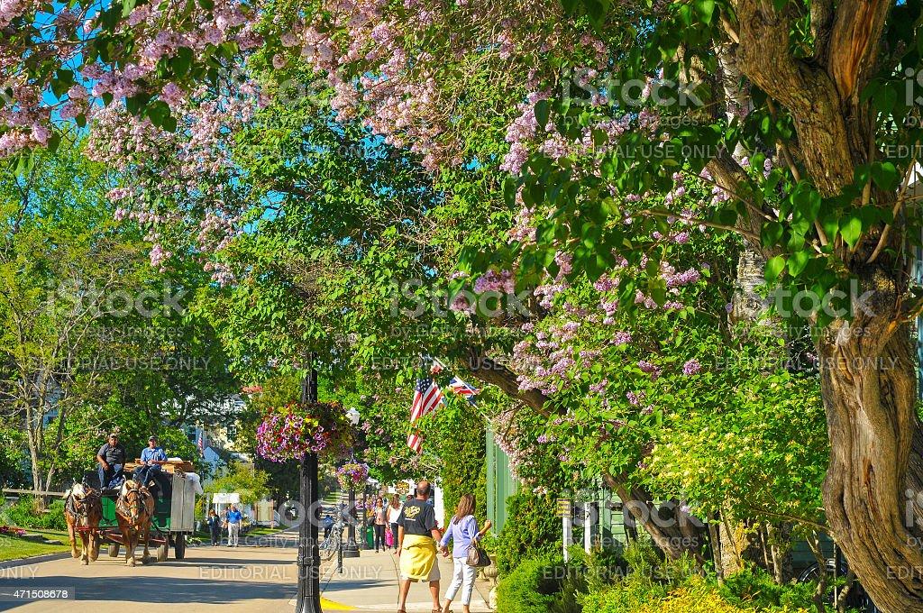 Flowery Mackinac street stock photo