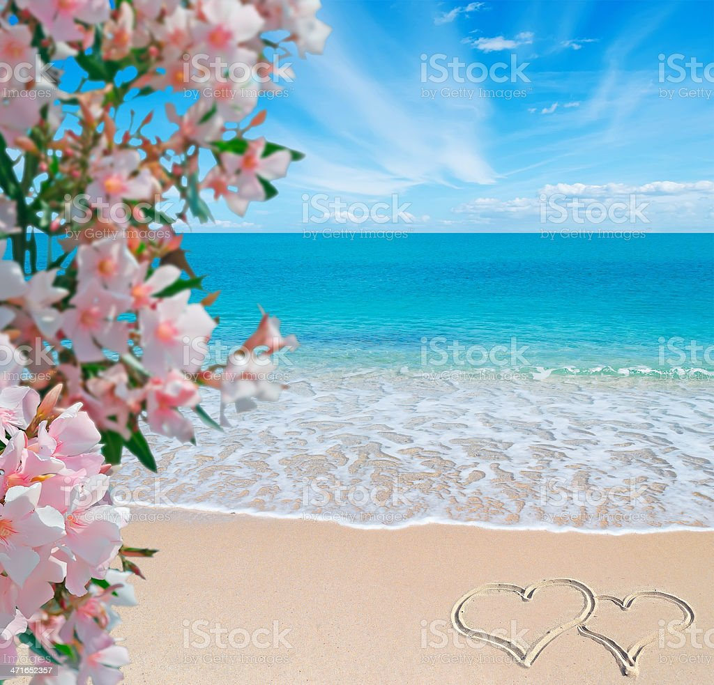flowes, sea and summer writing royalty-free stock photo