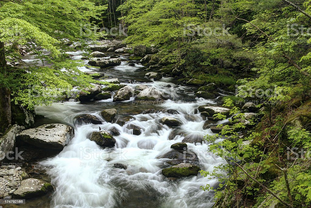 Flowing Cascades, Middle Prong Little River Smoky Mountains Tennessee stock photo