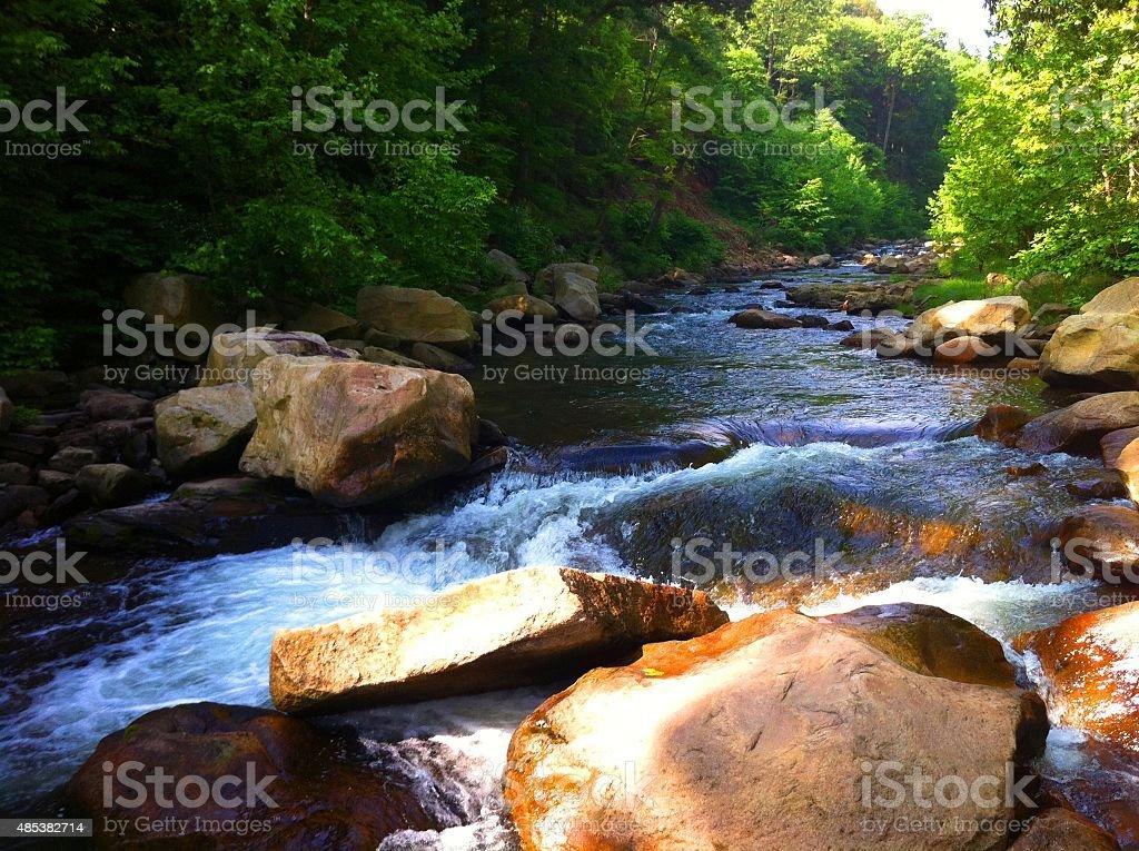 Flowing Mountain Stream stock photo